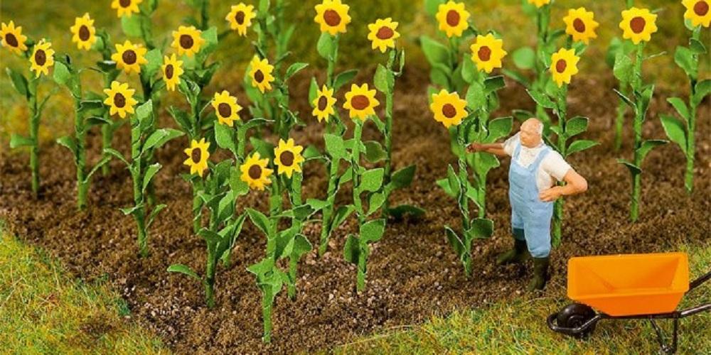 Bloemen, planten en graspollen