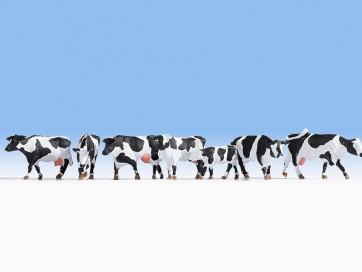 Noch 15725 - Kühe, schwarz-weiß