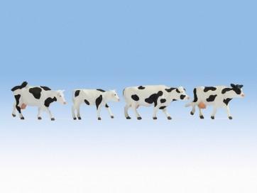 Noch 17900 - Kühe, schwarz-weiß