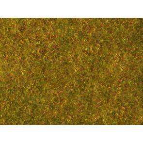 Noch 07290 - Wiesen-Foliage