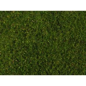 Noch 07291 - Wiesen-Foliage