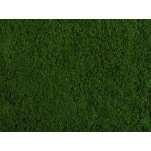 Noch 07271 - Foliage