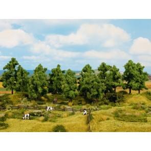 Noch 24601 - Laubbäume