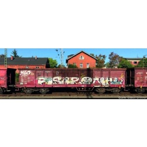 Piko 58392 - 2er Set Offener Güterwagen Eaos DB AG Ep. V, mit Graffiti