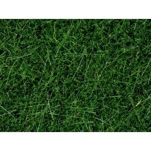 Noch 07106 - Wildgras, dunkelgrün, 6 mm