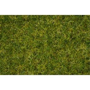 Noch 007072 - Master-Grasmischung Sommerwiese, 2,5 bis 6 mm