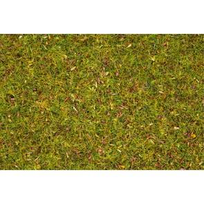Noch 08330 - Streugras Blumenwiese, 2,5 mm