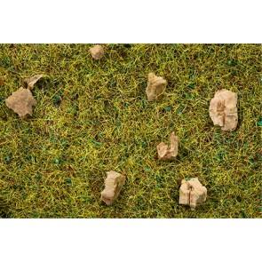 Noch 08360 - Streugras Steinige Bergwiese, 2,5 mm