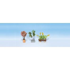 Noch 14014 - Zierpflanzen in Blumenkübeln_02_03