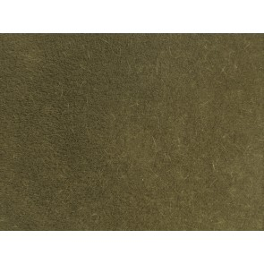 Noch 07122 - Wildgras